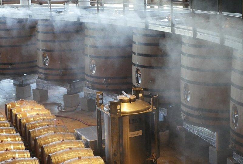 Entenda As Etapas Da Produção De Vinhos