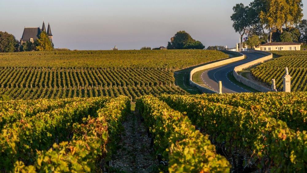 vinhos premium da frança