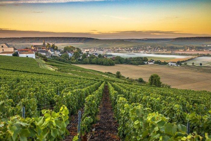 regiões vinícolas da frança