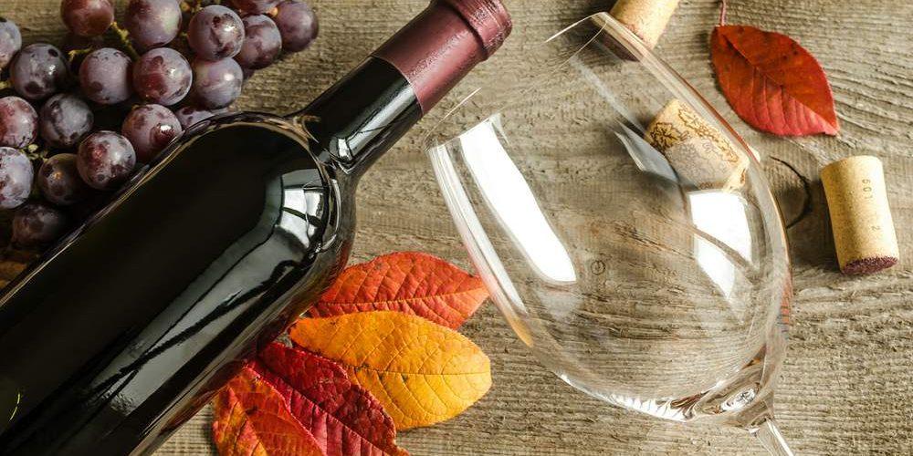 Vinhos Para O Outono: Descubra 5 Opções Para A Estação