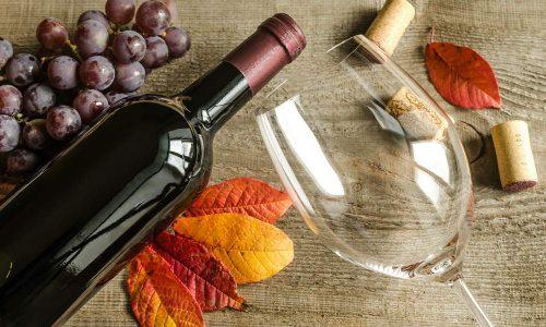 Vinhos Para O Outono