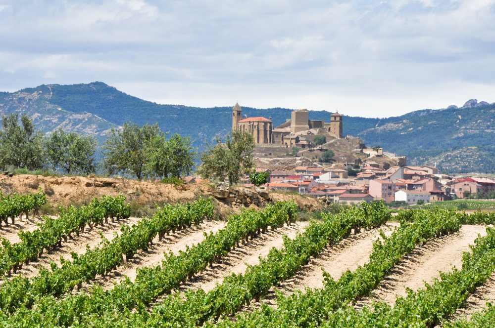 vinhos espanhois a historia dos vinhos espanhois