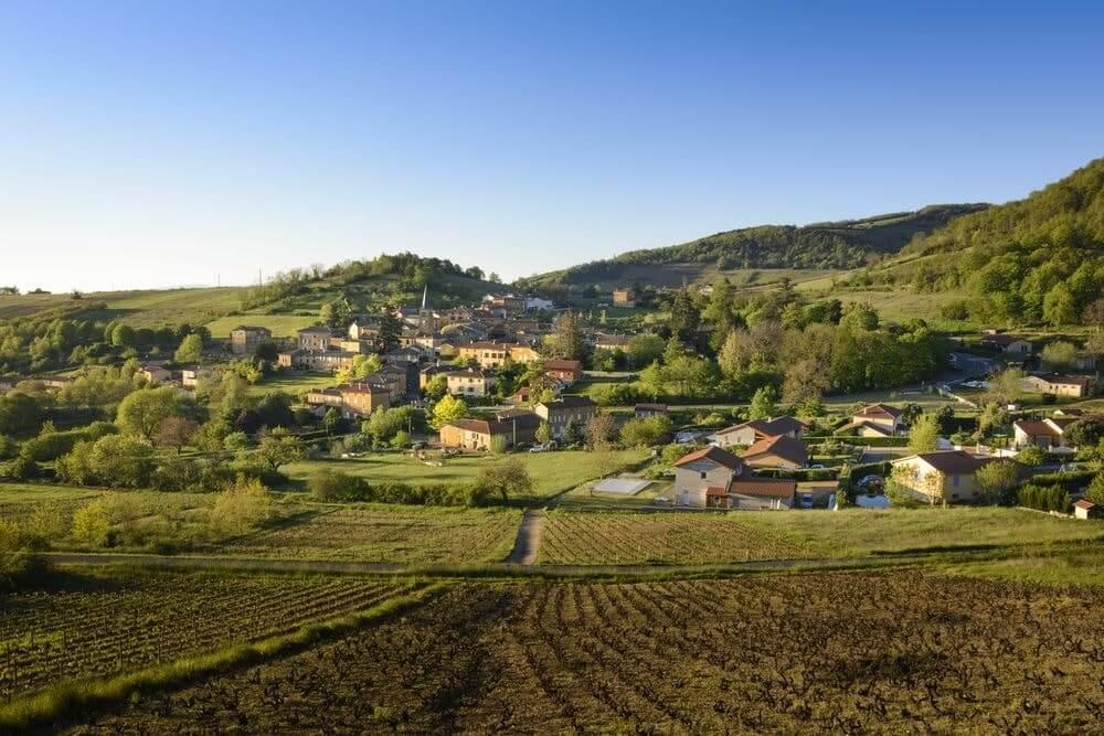 vinho beaujolais origem