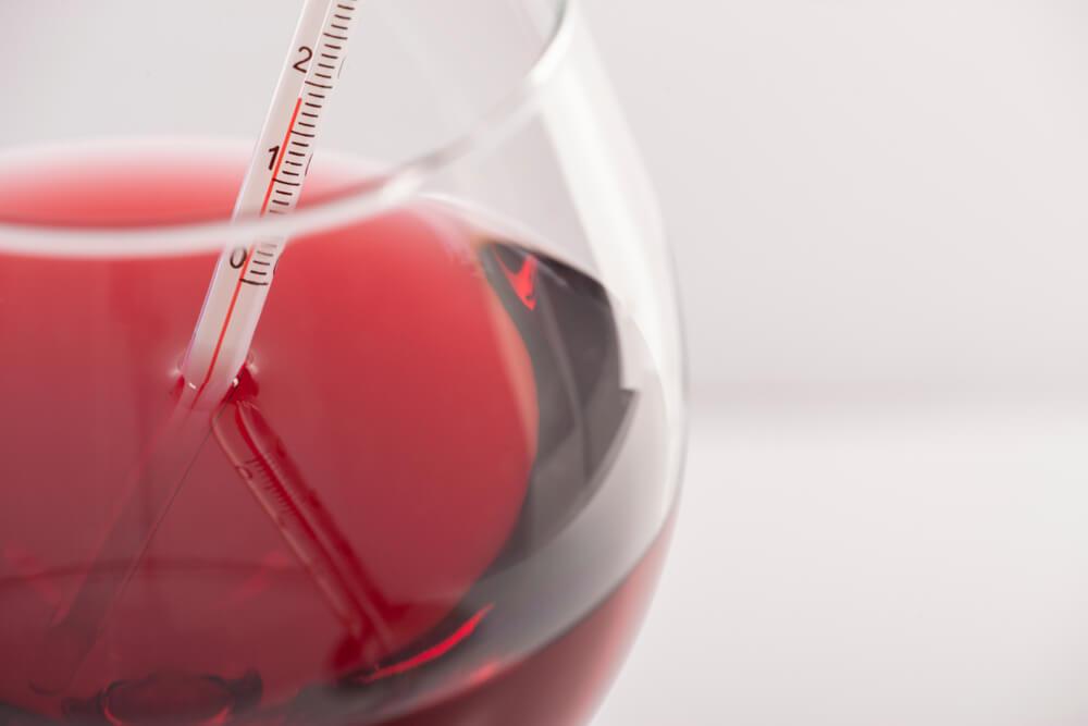 acessórios para vinho termômetro