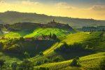 Vinhos Do Velho Mundo