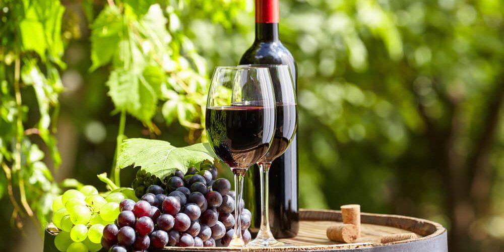 Vinho Merlot Francês: Saiba Tudo Sobre Os Rótulos De Bordeaux!