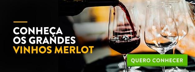 vinho merlot francês divvino