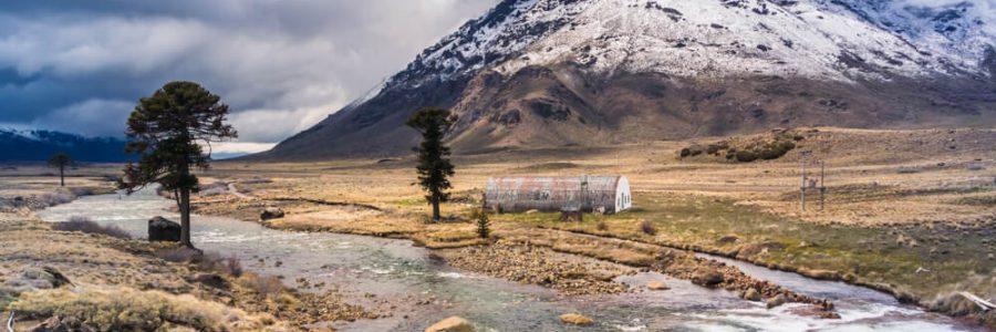 Vinhos Da Patagônia: Conheça Esse Incrível Terroir Argentino