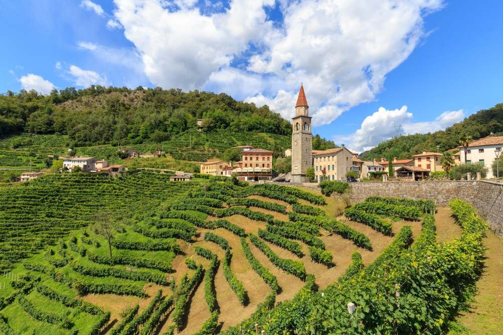 uva glera origem paisagem na região italiana do vêneto