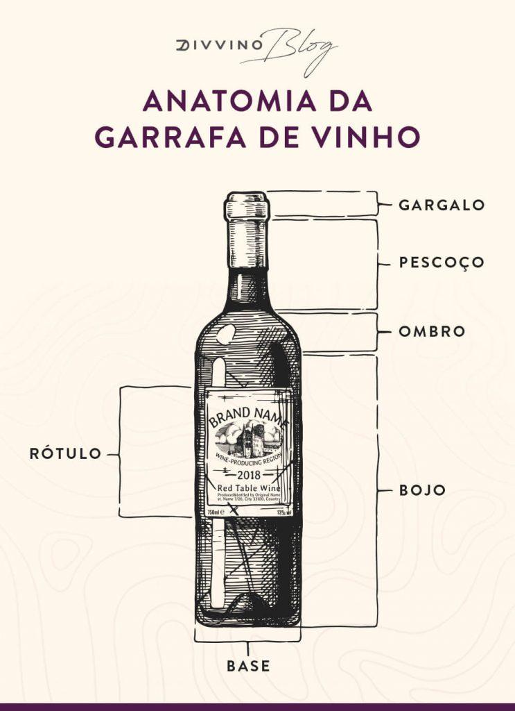 Infográfico partes da garrafa de vinho